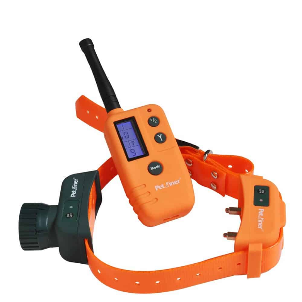 Best Dog Shock Collars That Help You Train Your Pet Quickly