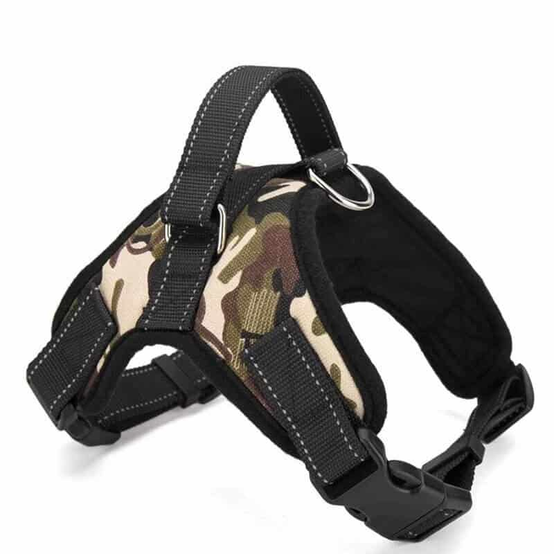 Here Are Some Dog Harnesses For Schutzhund Training