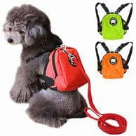 Buy The Best Dog Backpacks: Making Arrangements For  A Trip With Your Furry Friend?