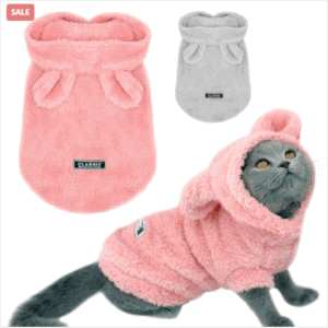 Clothing Essentials For Your Pet